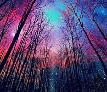 Inspiring picture color, colorful, galaxy, i was born a champion. Resolution: 430x600 px. Find the picture to your taste!