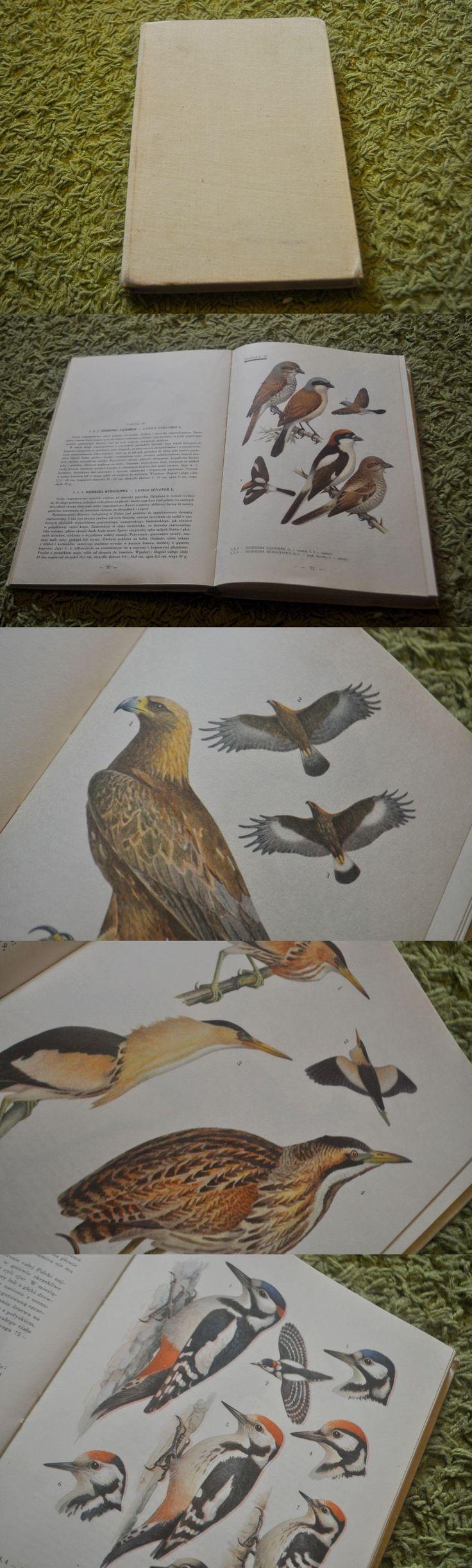 Tytuł: Ptaki Polski  Autor: Jan Sokołowski  Ilustracje: Władysław Siwek