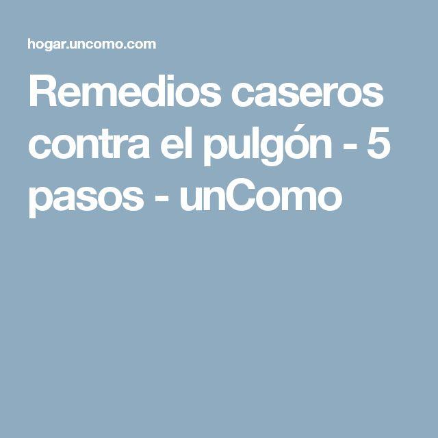 Remedios caseros contra el pulgón - 5 pasos - unComo