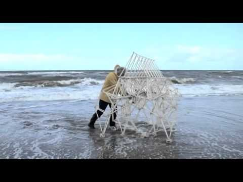 wind, creative