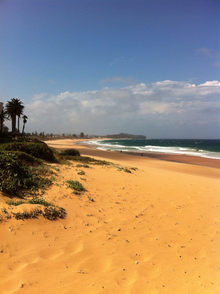 Northern Beaches - Sydney Australia