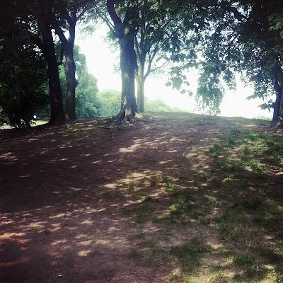 """sun ( shade ) summer"", Prospect Park."