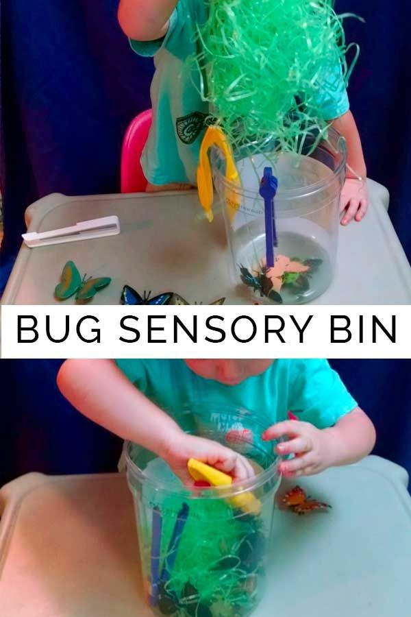 17 Best Images About Minibeasts On Pinterest Diy Clay