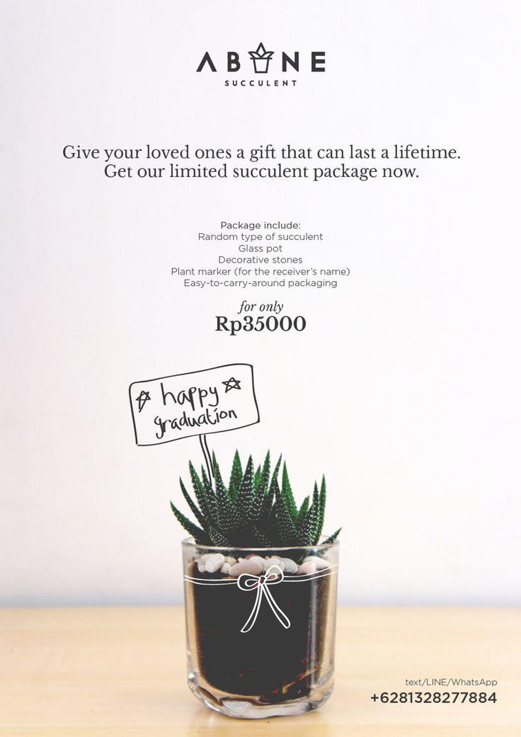 Succulent Package Promotion Poster Design #1