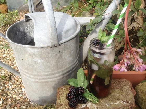 Berry filled vodka cocktail