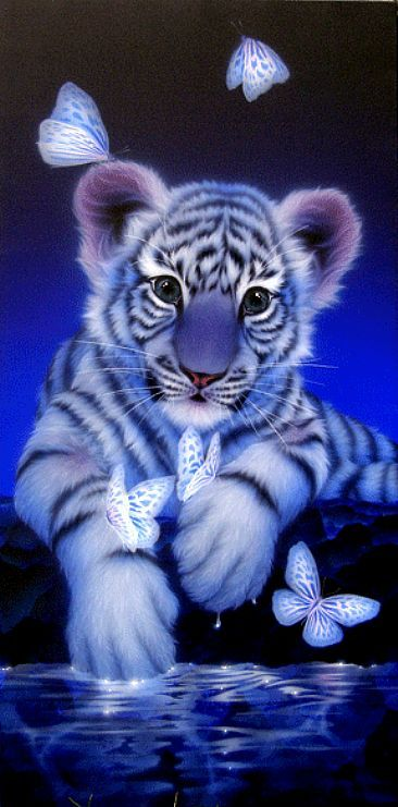White tigers...such beautiful animals