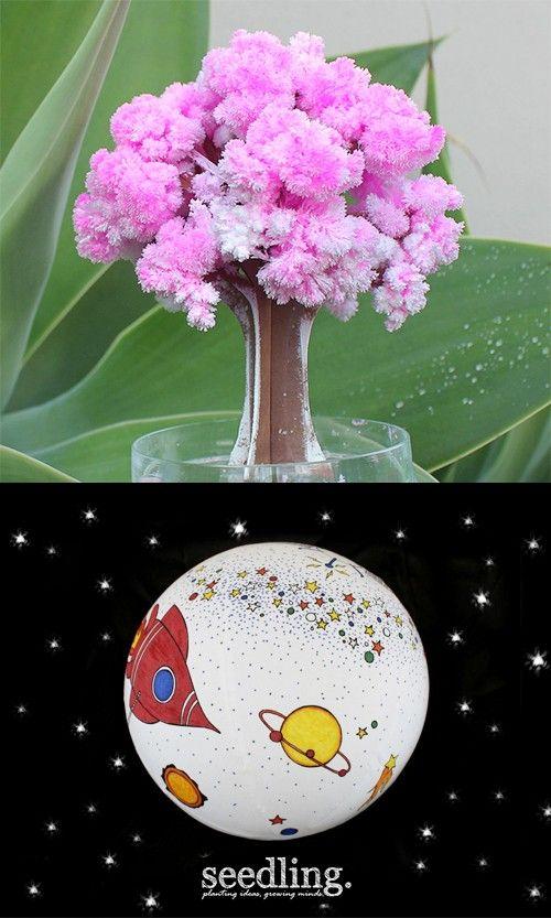 Help your magical cardboard tree burst into beautiful blossom.