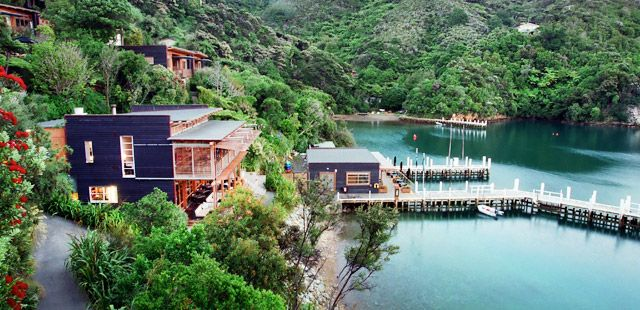 After we will the lottery- Bay of Many Coves Marlborough,NZ
