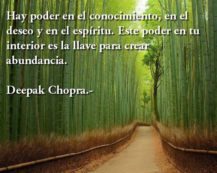 """*...""""Deepak Chopra""""...En Espanol!. """"La Abundancia"""".~*~."""