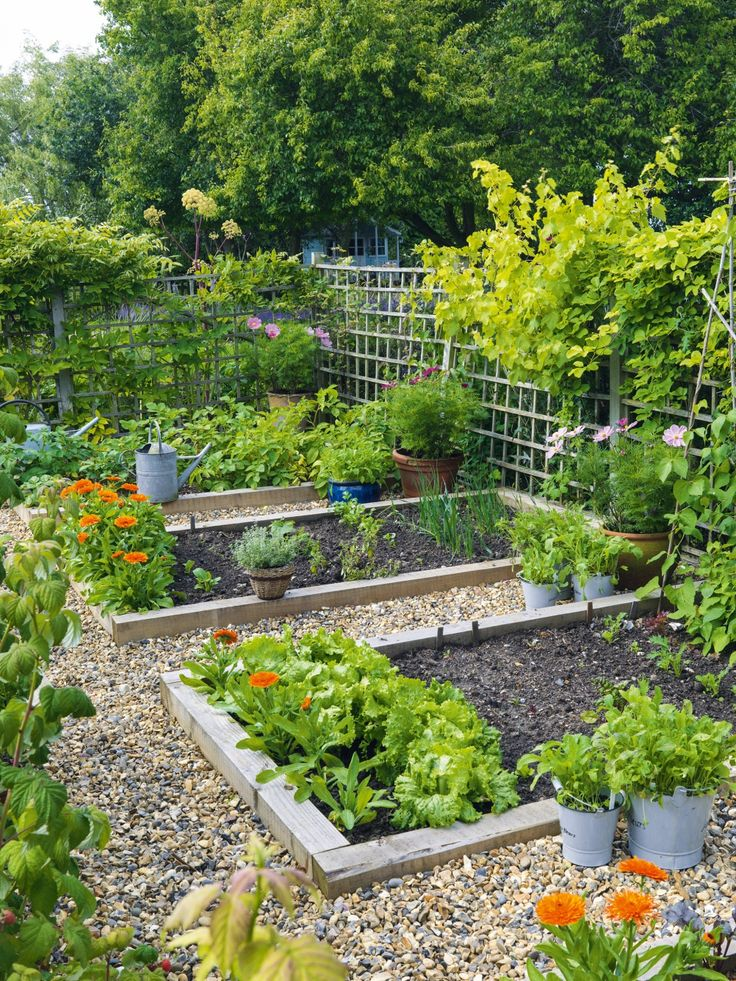 25+ Great Ideas About Large Backyard Landscaping On