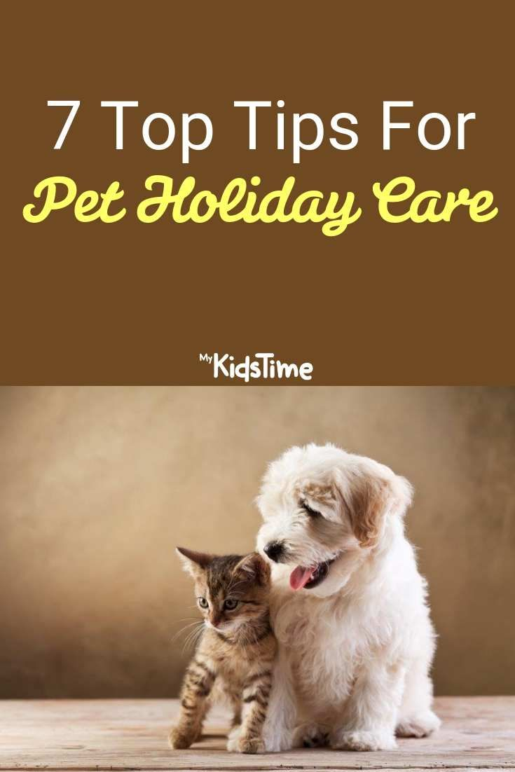 7 Top Tips For Pet Holiday Care Pets Pet Holiday Cool Pets