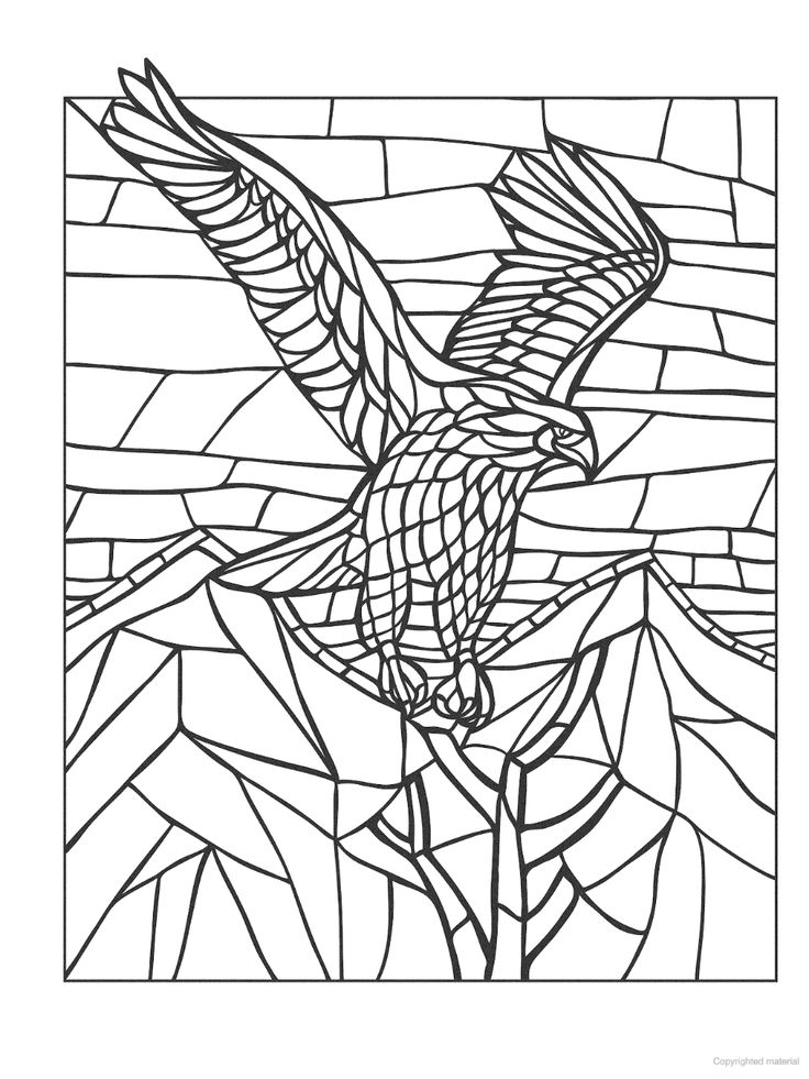 Creative Haven Animal Mosaics Coloring Book (With images
