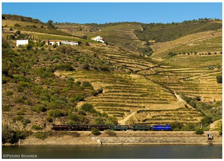https://flic.kr/p/Dzhavg | Ferrão 20-09-15 | Locomotiva Diesel nº1424, Comboio Histórico do Douro