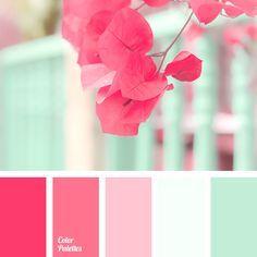 best 25 mint color ideas on pinterest mint color palettes mint color schemes and mint color room - Mint Green Colors