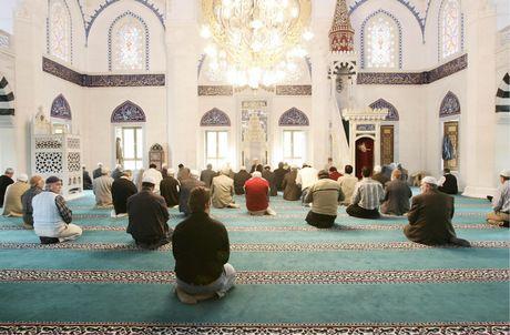 Mit Wissen über Islam gegen Fanatismus   Tiroler Tageszeitung Online - Nachrichten von jetzt!