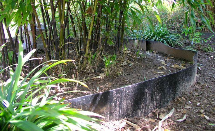 ber ideen zu bambus pflanzen auf pinterest. Black Bedroom Furniture Sets. Home Design Ideas