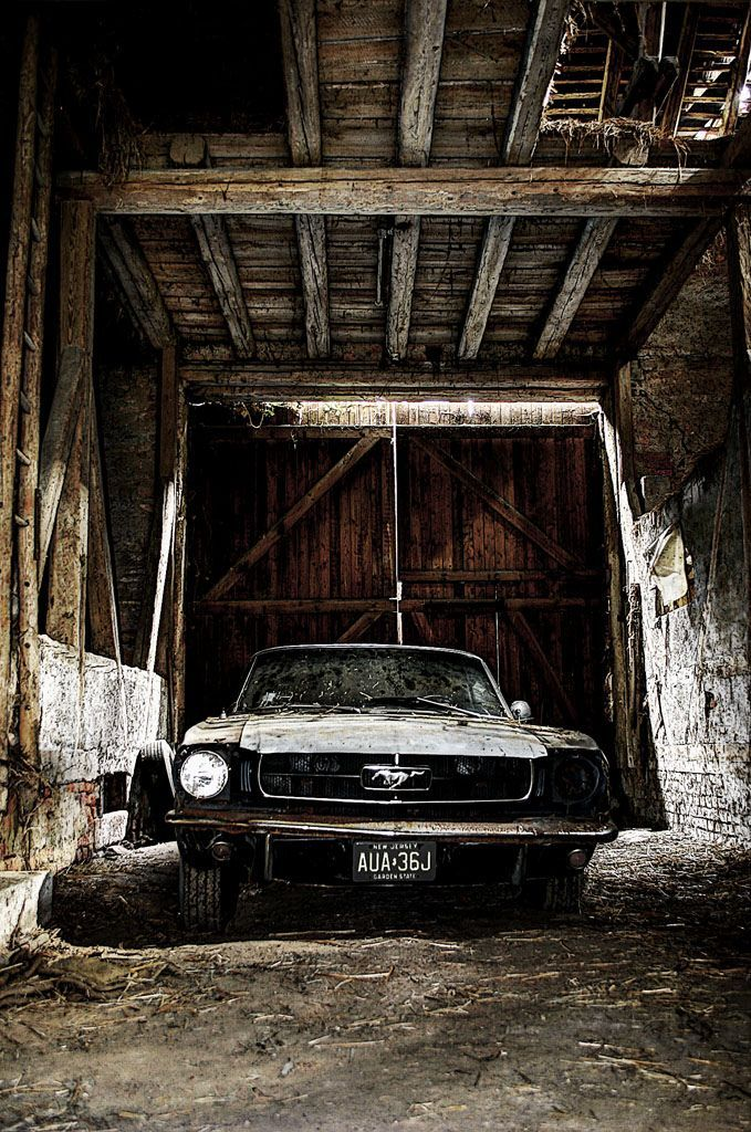 Somehow this almost looks prettier than a restored one.... it's like an old pair of converse, or that one pair of jeans with the holes and motor oil stains. 1965 Mustang.