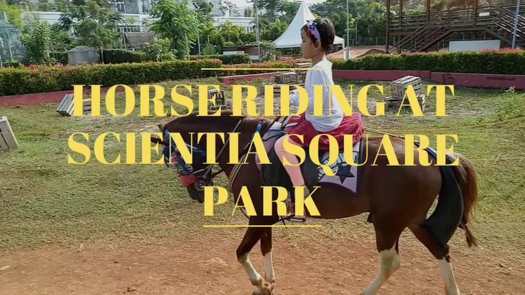 Off-road Horse Riding! At Scientia Square Park, Serpong, Indonesia