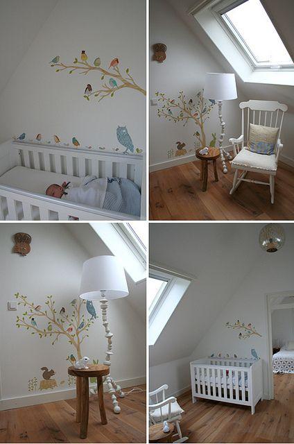 Nursery in the Netherlands