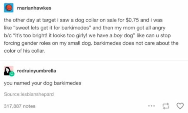 Barkimedes can't see the colour of his collar either. Both my girl dogs have blue collars and we picked it because we liked the blue collar.