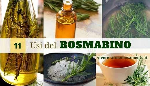 Gli usi del rosmarino sono tanti. Il rosmarino si usa per i capelli, come tonico per pelle grassa, collutorio e suffumigi. Ecco come usarlo anche in cucina