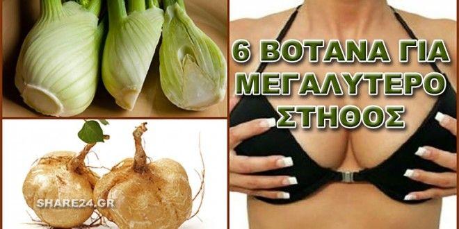 Ξεχάστε τη Σιλικόνη! 6 Βότανα για Μεγαλύτερο Στήθος!