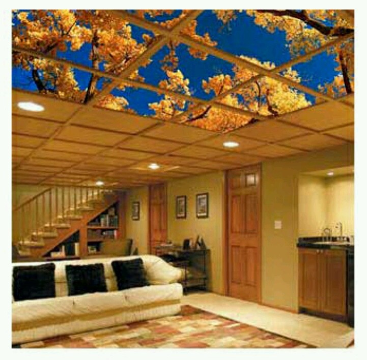 Lighting Ideas Ceiling Basement Media Room: Flourescent Light Covers For An Awesome Basement Ceiling