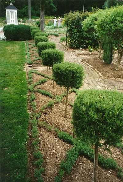 55 Best Images About Knot Gardens On Pinterest