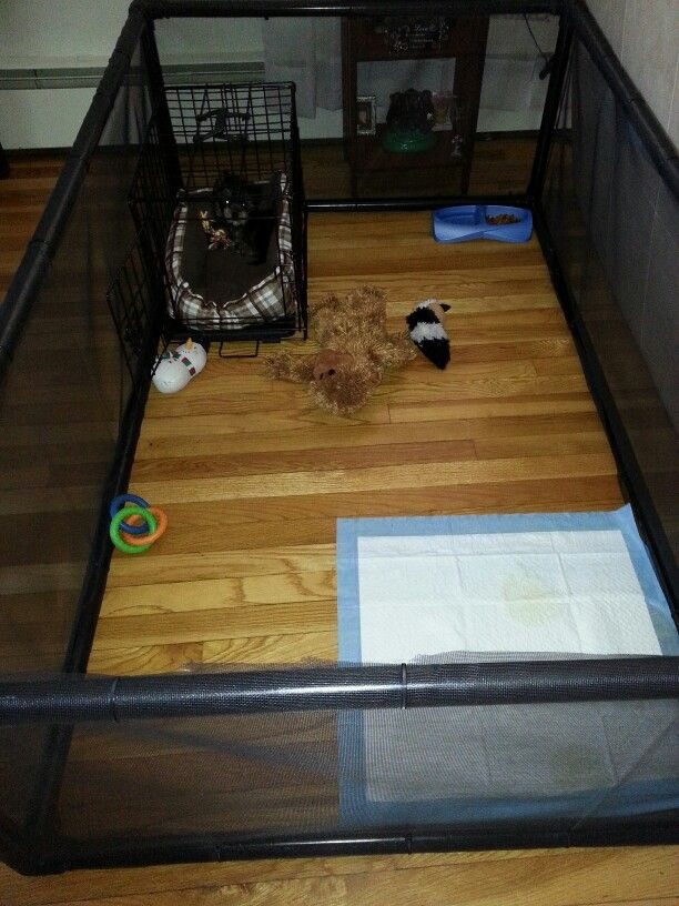 My diy custom size play pen for my pup.  Made from pvc, mosquito netting and zip ties.  So easy to do and inexpensive.