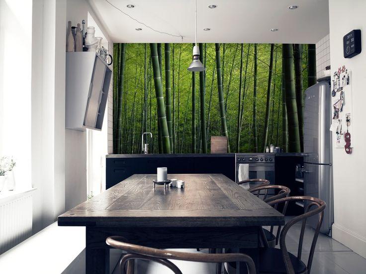 Bambu tapet | Fototapet | Gröna bambuträd | Skog | Happywall