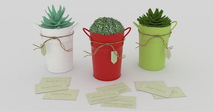 Diseño de tarjetas de visita y etiquetas para maceteros de plantas decorativas.