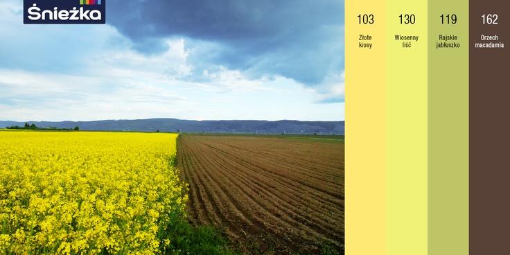 Złote kłosy, wiosenny liść, rajskie jabłuszko, orzech   -> Sniezka Kuchnia Lazienka Kolory