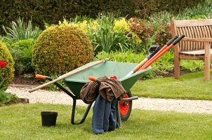 Moving things in the garden: traditional wheelbarrow.