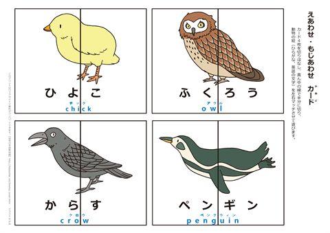 動物絵合わせカード 『ひよこ・ふくろう・からす・ペンギン』