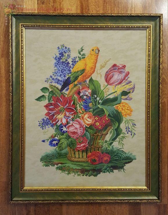 (12) Gallery.ru / Фото #9 - Цветочная корзина с попугаем (завершен 23.05.2017) - Tatiananik
