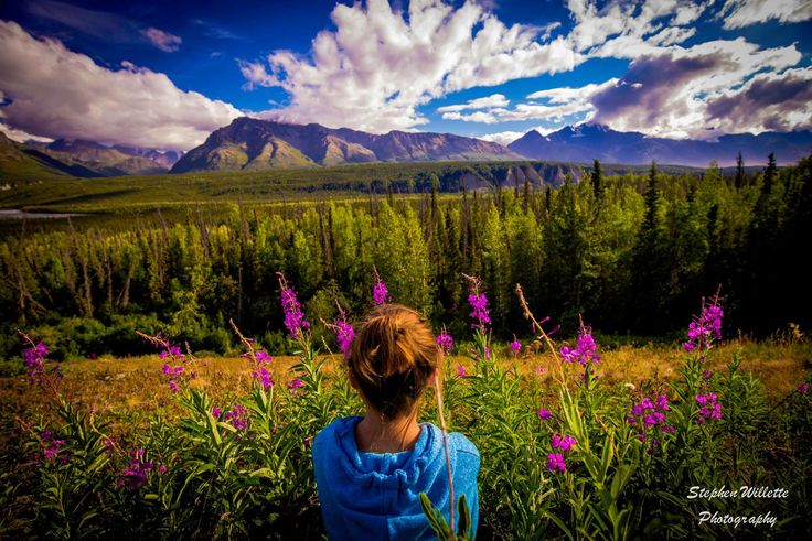 Stephen Willette Photography © www.facebook.com/stevewphotos