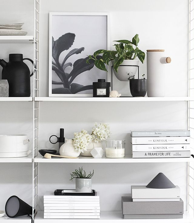 New Plants on my Shelf from Sill_life