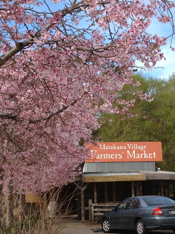 Matakana Farmers Market  AND spring time - doesn't get much better than this !