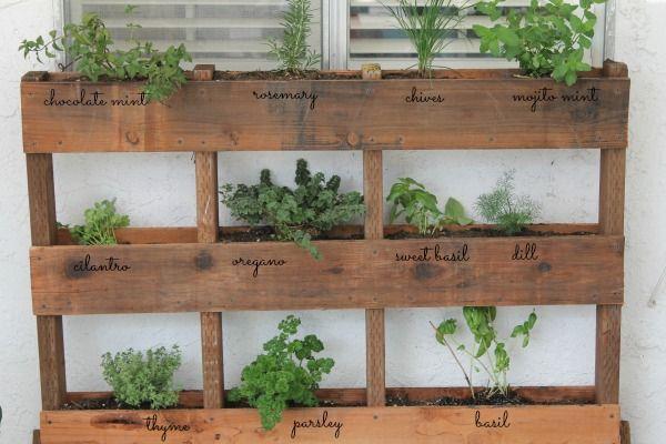 17 best images about garden ideas on pinterest gardens for Diy pallet herb garden