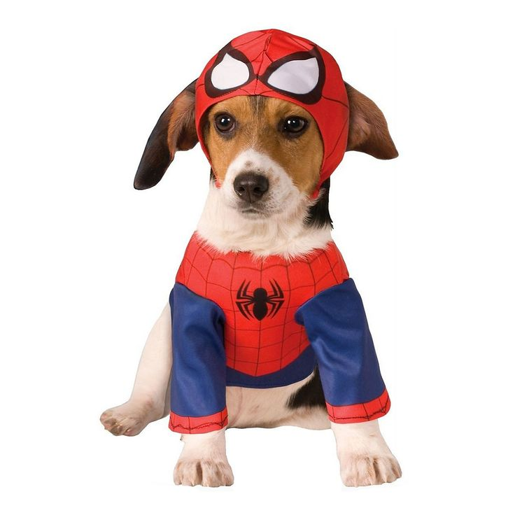 The 25+ best Dog costumes for kids ideas on Pinterest ...