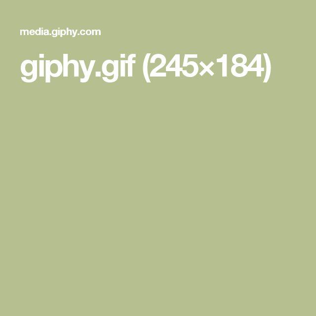 giphy.gif (245×184)