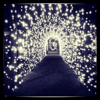 Fairy Light Tunnel Iphoneography Pinterest Powder