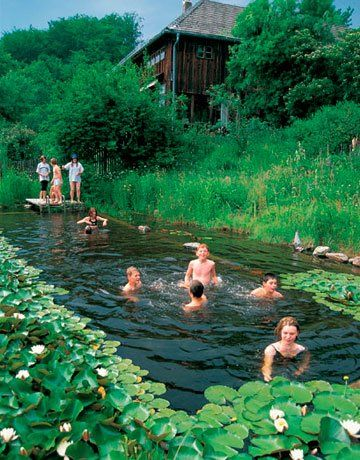 Natural Swimming Pools: simple, inexpensive, biologically filtered swimming pools. No chemicals or salts.