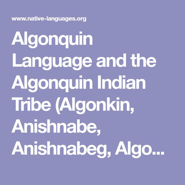 Algonquin Language and the Algonquin Indian Tribe (Algonkin, Anishnabe, Anishnabeg, Algonquins)