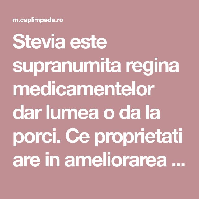 Stevia este supranumita regina medicamentelor dar lumea o da la porci. Ce proprietati are in ameliorarea diabetului si osteoporozei? | Cap Limpede