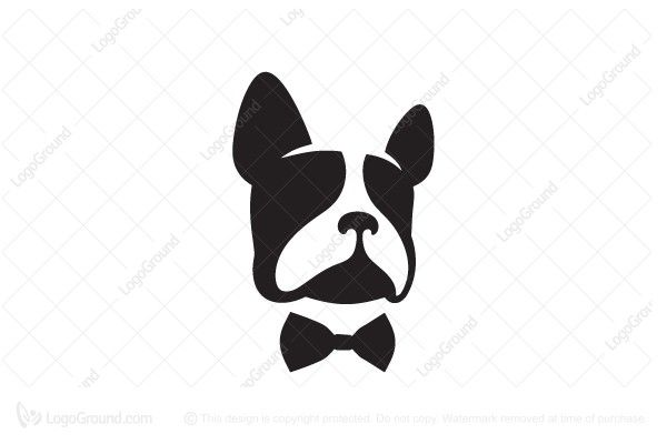 Logo for sale: French Bulldog Logo. Unique french bulldog with bow tie logo. The symbol itself will looks nice as social media avatar and website or mobile icon. bow tie logo logos pet fashion men's clothing buy purchase sell on sale sold product business brand design graphic unique recognized professional software apps app applications application dog doggy cute