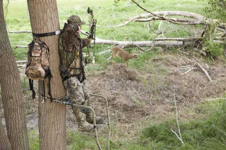"Avoid turning your deer hotspot into a ""cold spot"" by using these tips #DeerNation"