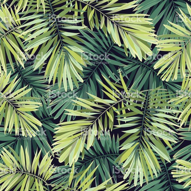 Fundo verde brilhante com plantas tropicais. Folhas de padrão exótico de vetor sem costura com palmeira Fênix vetor e ilustração royalty-free royalty-free
