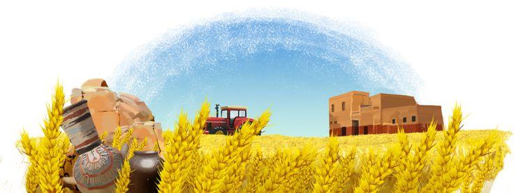 Grain de blé • Pasta packaging cover design on Behance