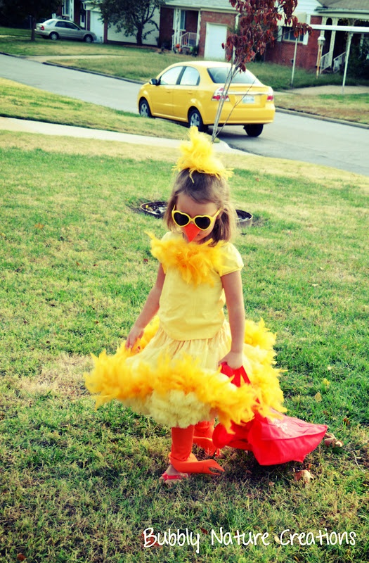 No Sew Halloween Costume Ideas... Peacock, Cool Chick and Bunny - Bubbly Nature Creations